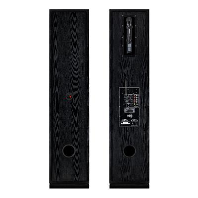 اسپیکر ایستاده 3 ساب 10 دنای مدل (DE-3010NW3 (mp3
